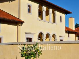stucco dilavato plaster with classic finish